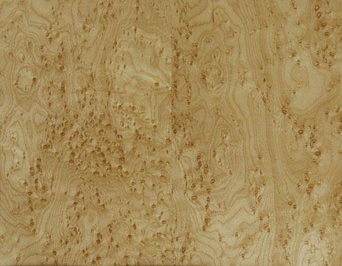 Index of images wood species birds eye maple